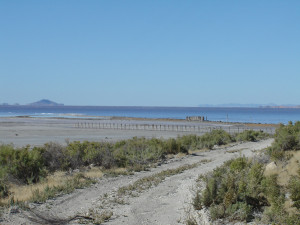 Remnants of the Rozel Point oil field, Great Salt Lake. Photograph: Chris McAuliffe.